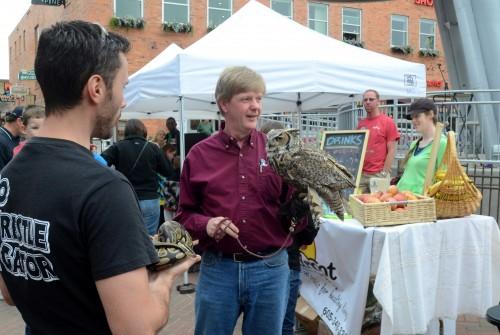 John & Icarus, great horned owl