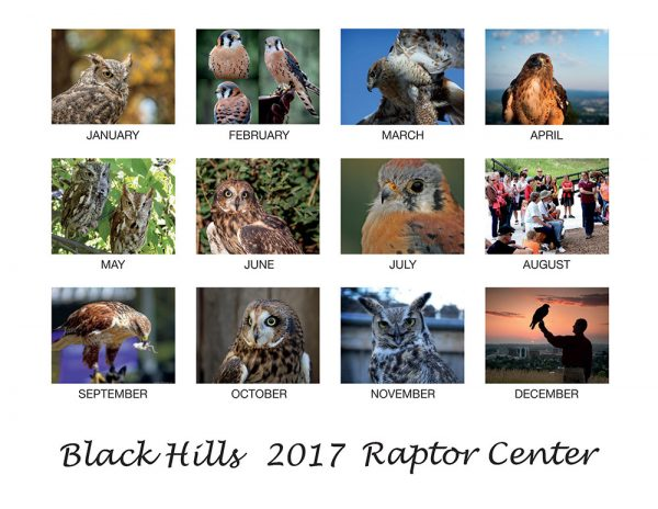 2016 Raptor Calendar, Black Hills Raptor Center, Rapid City SD