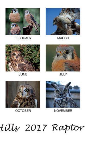 2016 Raptor Calendar, Black Hills Raptor Center, Rapid City SD